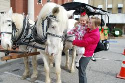 Carriage Rides for everyone to enjoy!!